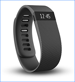 2. Fitbit Charge 2 Wireless Activity Wristband