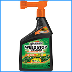 Spectracide Weed Stop