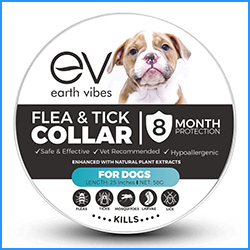 best earth vibes flea collar for dogs
